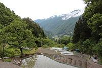 2014.6月7日、8日 大鹿村 041 (2).jpg