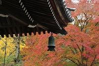 2015.11.13 京都 036.JPG