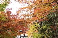 2015.11.13 京都 041.JPG