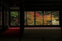 2015.11.13 京都 143.JPG