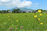 2015 7.6~24 北海道 100.JPG