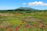 2015 7.6~24 北海道 193.JPG